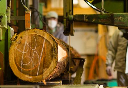 杉材の切断